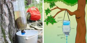 Фильтрация воды с помощью самодельных приспособлений