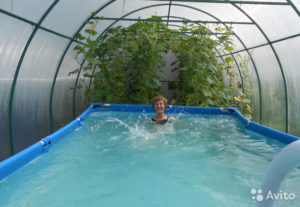 Как сделать бассейн в теплице?