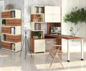 Столы со стеллажами в интерьере