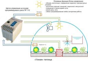 Умная теплица: автоматика для теплиц
