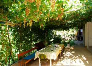 Красивые варианты беседок для винограда