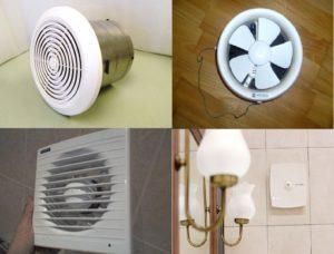 Разновидности и принцип работы настенных вентиляторов