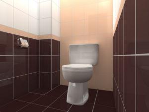 Напольная плитка для туалета: особенности выбора