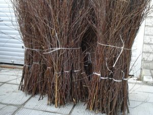 Березовые метлы: характеристики, достоинства и недостатки