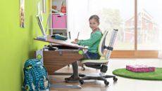 Как правильно выбрать стул для школьника?